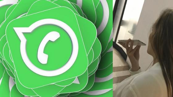 Celular, WhatsApp y llamadas